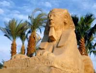 Египет Алькор ЮГ